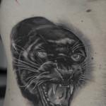 Tatuaggio con pantera nera realistica in bianco e nero su costato
