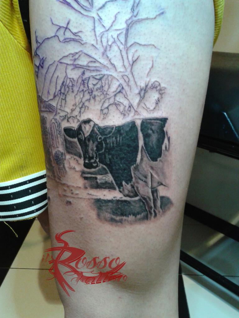 La mucca - Parte di una paesaggio in provincia di Parma