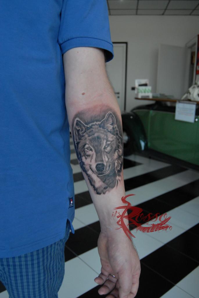Lupo tatuato interno avambraccio in bianco e nero