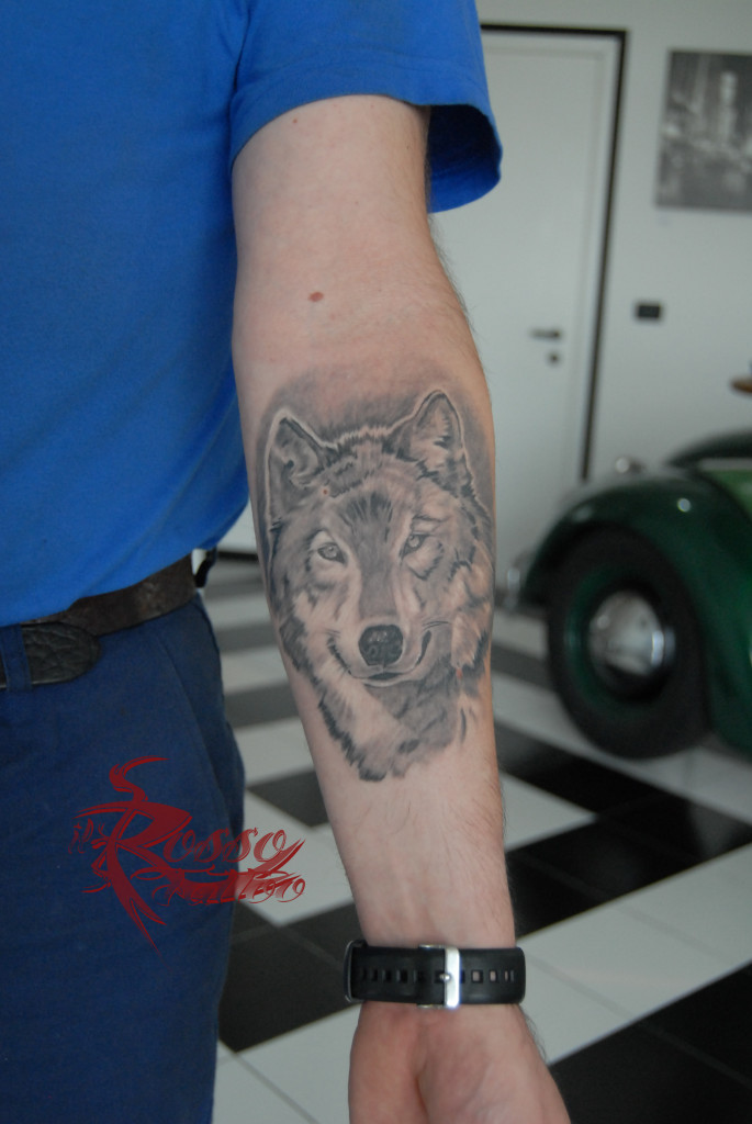 Tattoo lupo realistico guarito