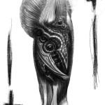 Sketch per coscia bioorganica - progetto